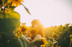 Summer sunset. Girl at sunset in a field of sunflowers Stock Photos