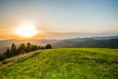 Summer sunset on a green meadow in mountains Stock Photos