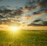 Summer sunset landscape. Field and sky with dark clouds Stock Photo