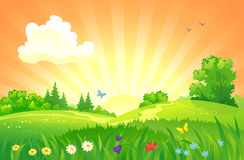 Summer sunset landscape. Illustration of beautiful summer sunset landscape royalty free illustration