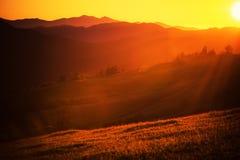 Summer Sunset Landscape Stock Images