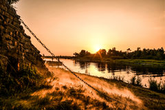 Summer sunset. Stock Images
