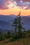 Summer sunset mountain view Carpathian, Ukraine. Royalty Free Stock Photos