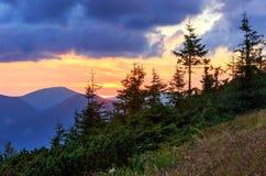 Summer sunset mountain view Carpathian, Ukraine. Stock Images