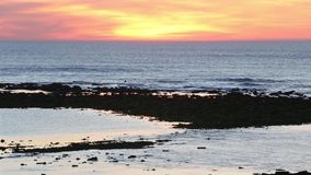 Summer sunset ocean view stock video footage