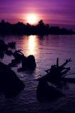 Summer Sunset over Muskoka Bay - Vertical Royalty Free Stock Images