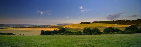 Summer sunset over the South Downs - high resolution stitched panorama of golden hour light falling on Butser Hill from above East royalty free stock photography