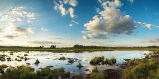 Summer sunset panorama landscape over wetlands Royalty Free Stock Photos