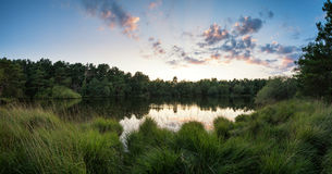 Summer sunset panorama landscape reflected in calm lake Stock Photography