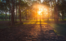 summer sunset and red stone floor in the forest , Thailand Stock Photography
