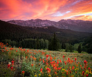 Summer sunset in the Wasatch mountains. Stock Photo