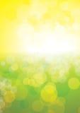 Summer  sunshine Stock Image