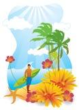 Summer Surfer Stock Image