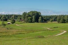 Summer in Sweden Stock Image