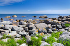 Summer Swedish coast in sunny day Stock Photos