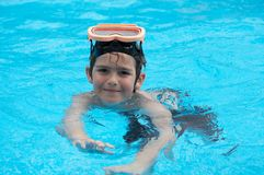 Summer swim royalty free stock photo
