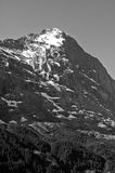 Summer in the Swiss mountains - Bernese Alps Royalty Free Stock Photo