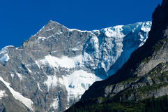 Summer in the Swiss mountains - Bernese Alps Royalty Free Stock Images