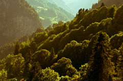 Summer in the Swiss mountains - Bernese Alps Stock Image