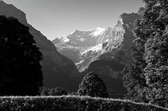 Summer in the Swiss mountains - Bernese Alps Royalty Free Stock Photos