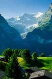 Summer in the Swiss mountains - Bernese Alps Royalty Free Stock Photography
