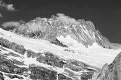 Summer in the Swiss mountains - Bernese Alps Royalty Free Stock Image