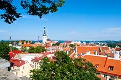 Summer Tallinn Royalty Free Stock Photos