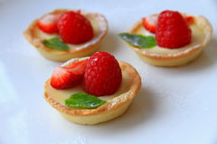Summer tarts Stock Photography