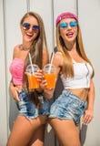 Summer taste Royalty Free Stock Image