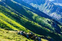 Summer Tatra Mountain, Poland Stock Image