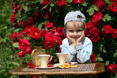 Summer tea in a garden. With red roses Stock Image