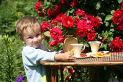 Summer tea in a garden. With red roses Royalty Free Stock Photos