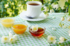 Summer tea with honey under the jasmine bush. Three bowls of honey and cup of tea on the table under the jasmine bush Royalty Free Stock Photography