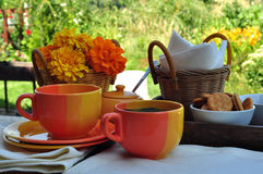 Summer tea party Royalty Free Stock Image