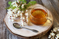 Summer Tea Party: Herbal tea and  flowering acacia Royalty Free Stock Image