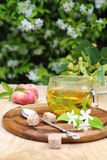 Summer Tea Party: herbal tea in the lush  garden Stock Images