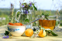 Summer tea time. Apricot jam and mint tea Royalty Free Stock Image