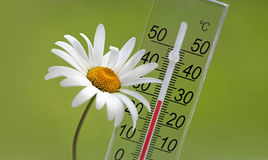 Summer temperature Royalty Free Stock Image