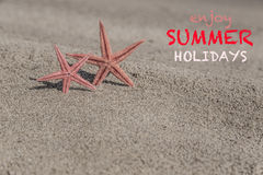 Summer template with starfishes on a sandy beach Stock Photos