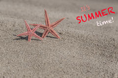 Summer template with starfishes on a sandy beach Stock Image