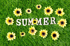 Summer text background Royalty Free Stock Photo