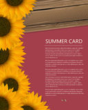 Summer text card Stock Photo