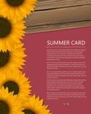 Summer text card Stock Photo