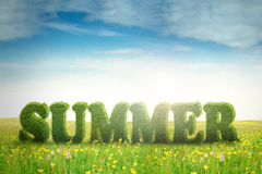Summer text on the meadow Royalty Free Stock Photos