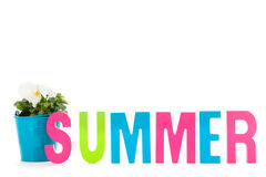 Summer in text Stock Photography