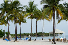 Summer in th Keys Royalty Free Stock Image