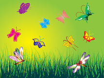 Summer theme. Butterflies on the green sky. Vector illustration Royalty Free Stock Photos
