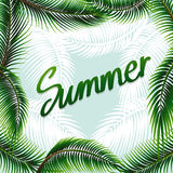 Summer theme background with green leaves Royalty Free Stock Photo