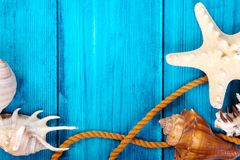 Summer theme blue background with space for advertising and maritime theme. (seashells, starfish, sea knots, anchor Royalty Free Stock Images