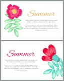 Summer Theme Colorful Posters Vector Illustration. Summer theme colorful posters with beautiful plants on white background. Vector illustration with pencil drawn Stock Images